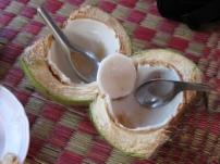 Kokosnuss frisch!
